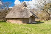 picture of serpent  - Part of viking age village replica in southern Sweden in early spring - JPG