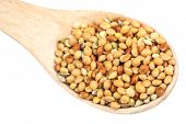 picture of millet  - Multicolored raw millet in a wooden spoon closeup - JPG