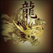 Постер, плакат: Golden Chinese Dragon Closeup