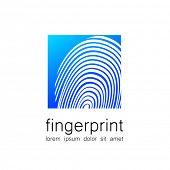 picture of fingerprint  - Fingerprint  - JPG