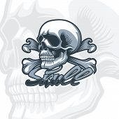 Skull And Bones, Monochrome Detailed Drawing. Monochromic Tattoo Style. poster
