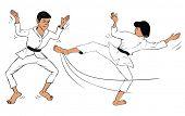 stock photo of friendship belt  - Karate - JPG