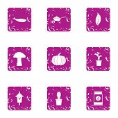 Private Land Icons Set. Grunge Set Of 9 Private Land Icons For Web Isolated On White Background poster