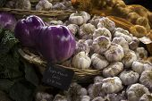 Purple French Garlic For Sale At Borough Market poster