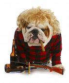 redneck dog - english bulldog redneck smoking cigar and sitting beside gun and beer bottles