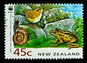 NEW ZEALAND - CIRCA 1991: A stamp printed in New Zealand, shows a giant snail, rock wren, frog, circ