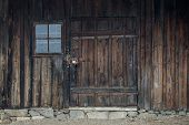 Rustic Old Peasant House With Wooden Windows poster