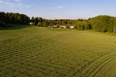 July Sunny Evening In Rural Finland (aerial Photography). Snapertuna, Finland poster