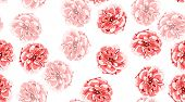 Red Roses Pattern, Vintage Floral Background In Watercolor Style. Rustic Wedding Decoration, Card In poster