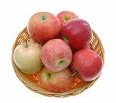 Apple Basket