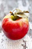 Wet Red Apple.