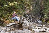 Contemplating Nature's Beauty In Little Cottonwood Canyon In Utah