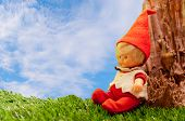 seated doll dressed elf sitting on green grass against the trunk of a tree on a sunny day