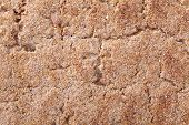 picture of wasa bread  - Close up of a crispbread with sesame seeds as a food background - JPG
