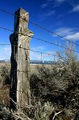 Trespasser's Post