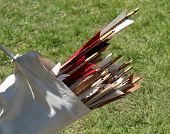 Archery Quiver Arrows.