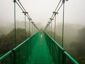 pic of canopy  - A suspension bridge fades into the myst on a canopy tour at Monte Verde Cloud Forest - JPG