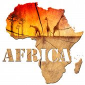 Africa Map Wooden Illustration mouse pad