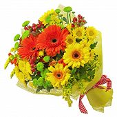 picture of yellow orchid  - Colorful bouquet from gerbera flowers isolated on white background - JPG
