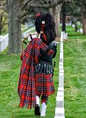 stock photo of bagpiper  - Arlington National Cemetery with bagpiper walking down line of gravestones - JPG