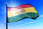Bolivia flag waving on the wind