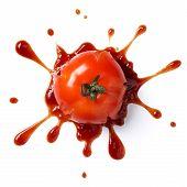 Постер, плакат: Crushed Tomato
