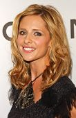 Sarah Michelle Gellar at the Chanel and P.S. Arts Party. Chanel Beverly Hills Boutique, Beverly Hill