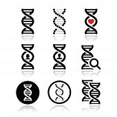DNA, genetics vector icons set