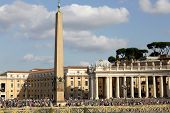 St. Peter's Square Obelisk And Colonnades  In The Vatican City