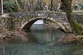 Livadia Stream, Greece