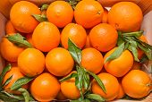 stock photo of valencia-orange  - Top view of tasty spanish oranges freshly collected on a wooden box - JPG