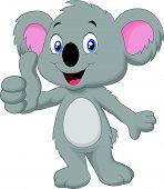 stock photo of koala  - Vector illustration of cute koala giving thumb up - JPG