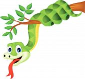 stock photo of long tongue  - Vector illustration of  Cartoon green snake on branch - JPG