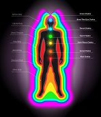 stock photo of chakra  - Vector Illustration of Human Auras and Chakras Eps10 Vector Ai Eps and Jpg Included - JPG