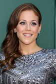 LOS ANGELES - JUL 8:  Erin Krakow at the Crown Media Networks July 2014 TCA Party at the Private Est