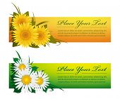 Colorful floral banners, EPS 8, CMYK