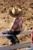 image of brahma-bull  - A young cowboy watches the rodeo action - JPG