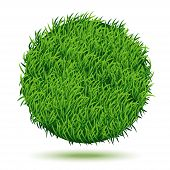 Circle Background Of Green Grass