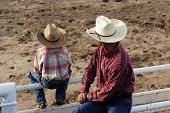 stock photo of brahma-bull  - Cowboy father and son watching rodeo action - JPG