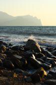 Morning on the seaside