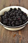 stock photo of mulberry  - Fresh mulberry in the enameled bowl - JPG