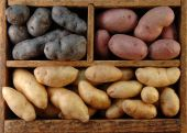 Wooden Box Of Potatoes
