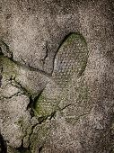 Shoe Footprint On Concrete Surface