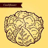 Retro cauliflower