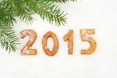 Date New Year Of 2015 Homemade On Snow With Fir