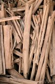 Pile Of Twigs For Heating