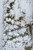 Snow Frosted On Window