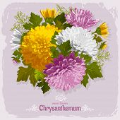 Beautiful illustration with bouquet of chrysanthemum on grunge background. Vintage design elements.