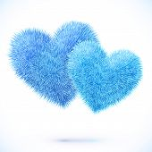 Vector isolated pair of blue fluffy hearts