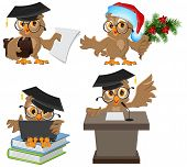 Set owl in mortarboard